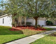 1415 Emerald Hill Way, Valrico image