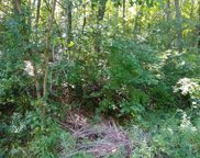 Lot 83 Pincushion Lane, Cullowhee image
