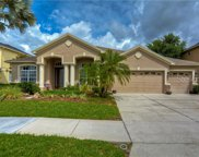 3400 Marble Crest Drive, Land O' Lakes image