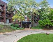 440 Raintree Court Unit #1A, Glen Ellyn image
