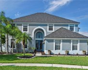 10413 Rocky River Court, Tampa image