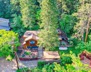41 Silver Spruce, Boulder image