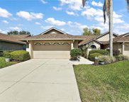 2011 Arbor Way, Mount Dora image