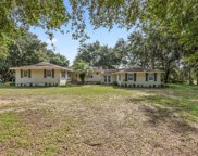 5531 Moon Lake Road, Groveland image