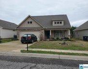 5305 Jean Ridge Ln, Odenville image