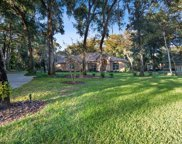 203 Piney Woods Road, Apopka image