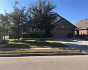 267 Clear Springs Hollow, Buda image