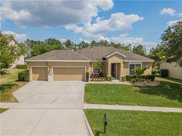 3516 Tumbling River Drive, Clermont image