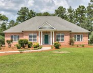 30 Cetch Court, Aiken image