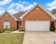 7365 Old Mill Trail, Trussville image