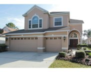17929 Timber View Street, Tampa image