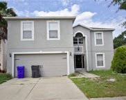13512 Small Mouth Way, Riverview image