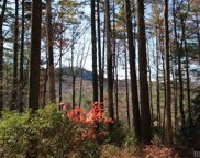 4 Pine Forest, Cashiers image
