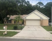 3726 Murray Dale Drive, Valrico image