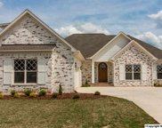 17454 Spring View Drive, Athens image