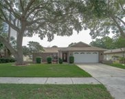 3637 Fairway Forest Circle, Palm Harbor image