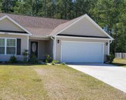 252 Timber Run Dr., Georgetown image
