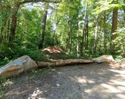 000 Dean Falls Trail, Franklin image