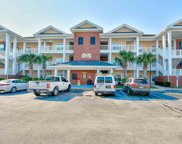 1106 Louise Costin Way Unit 1509, Murrells Inlet image