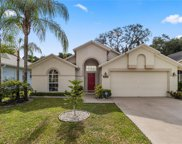 4729 Dunquin Place, Tampa image