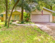 10507 Walker Road, Thonotosassa image