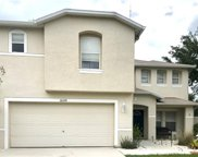 10630 Boyette Creek Boulevard, Riverview image