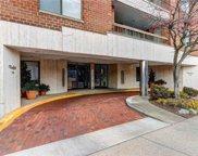 376 Central  Avenue Unit #1K, Lawrence image