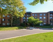 950 East Wilmette Road Unit 411, Palatine image