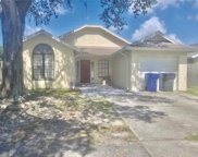 12802 Millridge Forest Street, Tampa image