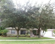 4006 Woodacre Lane, Tampa image