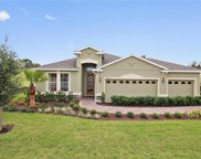 715 Birch Hollow Drive, Ocoee image