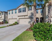 10310 Holstein Edge Place, Riverview image