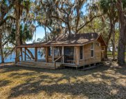 108 FISH CREEK TRL, Palatka image