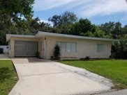 193 Daymora Parkway, Holly Hill image