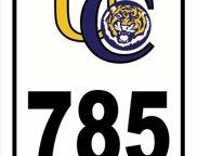 785 Thomas Boyd Dr, Baton Rouge image
