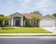 15070 Hawks Shadow  Drive, Fort Myers image