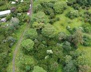 13 MILE RD, Big Island image