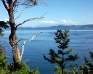 0 Lot 1 Fauntleroy Point Dr, Decatur Island image