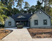 1816 Wood Stork Dr., Conway image