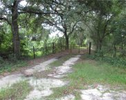 Bay Lake Road, Groveland image