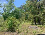 Lot 3 Mill Swamp Rd., Longs image