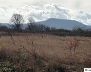 LOT 15 B Newport Hwy., Sevierville image