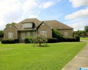 10 Brian Knoll, Odenville image