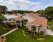 450 Lake Of The Woods Drive, Venice image