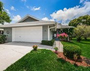 1007 Lake Avoca Drive, Tarpon Springs image