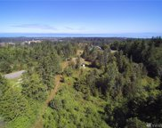 9999 Chasewood Dr, Port Angeles image