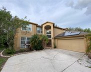 2095 Otter Way, Palm Harbor image
