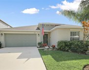 10245 Strawberry Tetra Drive, Riverview image