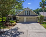 10132 Whisper Pointe Drive, Tampa image