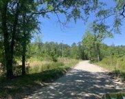 Lot 2 Mill Swamp Rd., Longs image